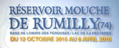 Réservoir Mouche de Rumilly