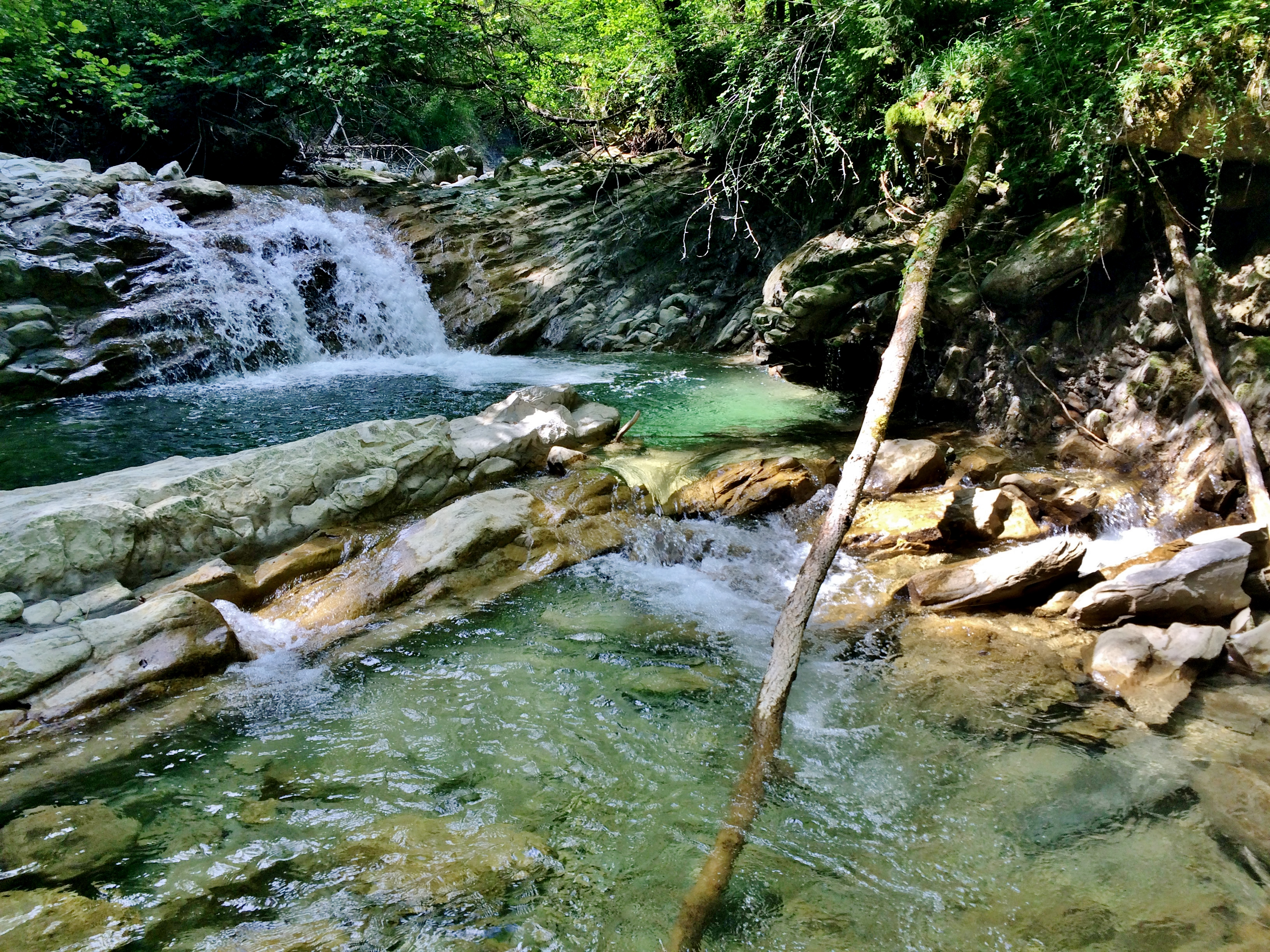 La Leysse un peu en amont de la confluence avec le ruisseau du Pontet au niveau de la commune de Thoiry