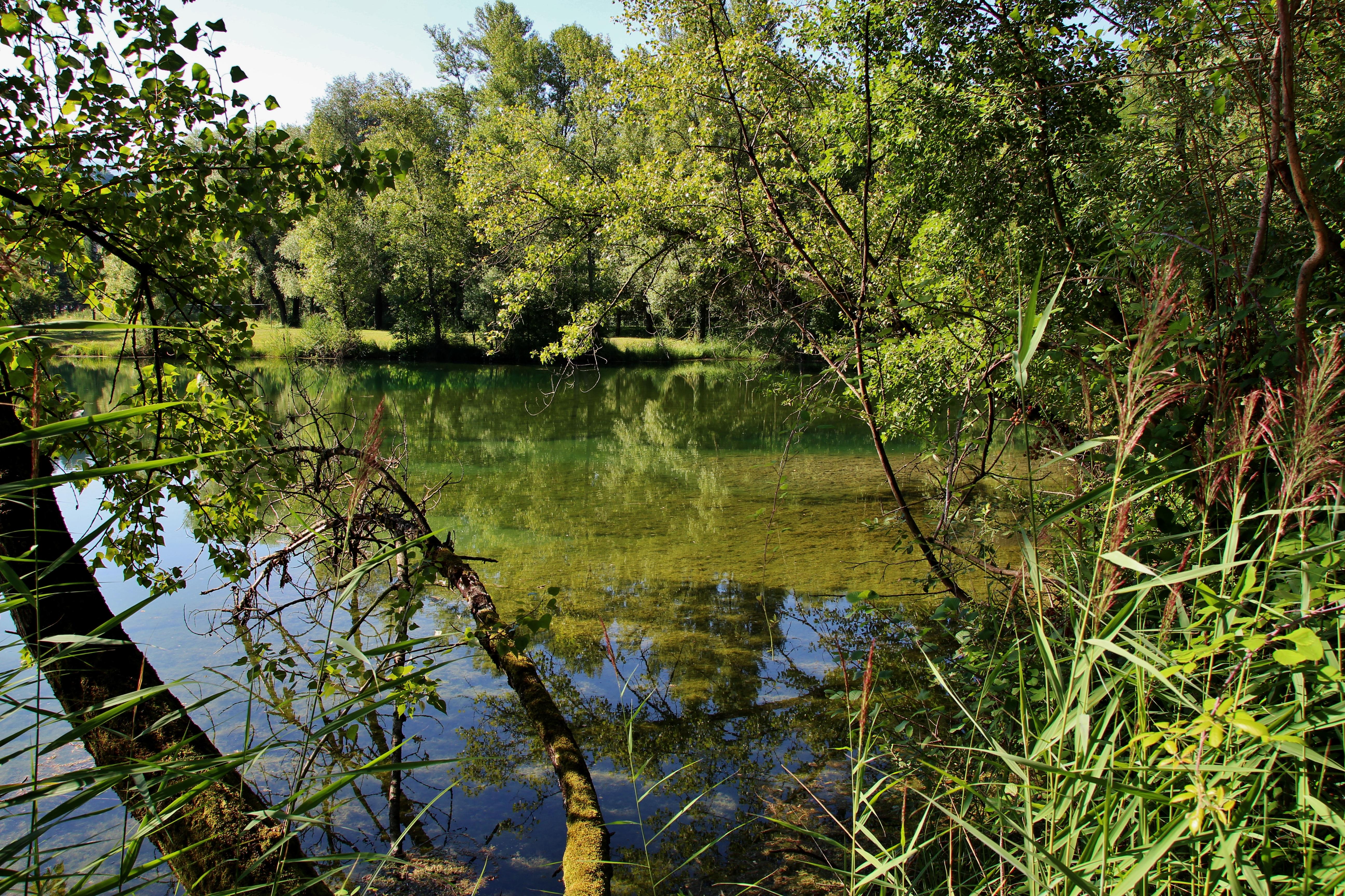 Le petit lac de Carouge est réservé uniquement à la pêche
