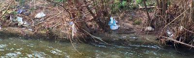 Les Pêcheurs Chambériens et Chambéry métropole nettoient les cours d'eau en septembre !